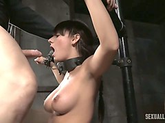 Bus, Babe, Sybian